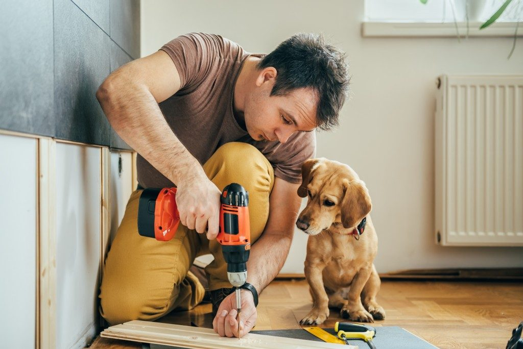 Man doing home renovation with dog beside him