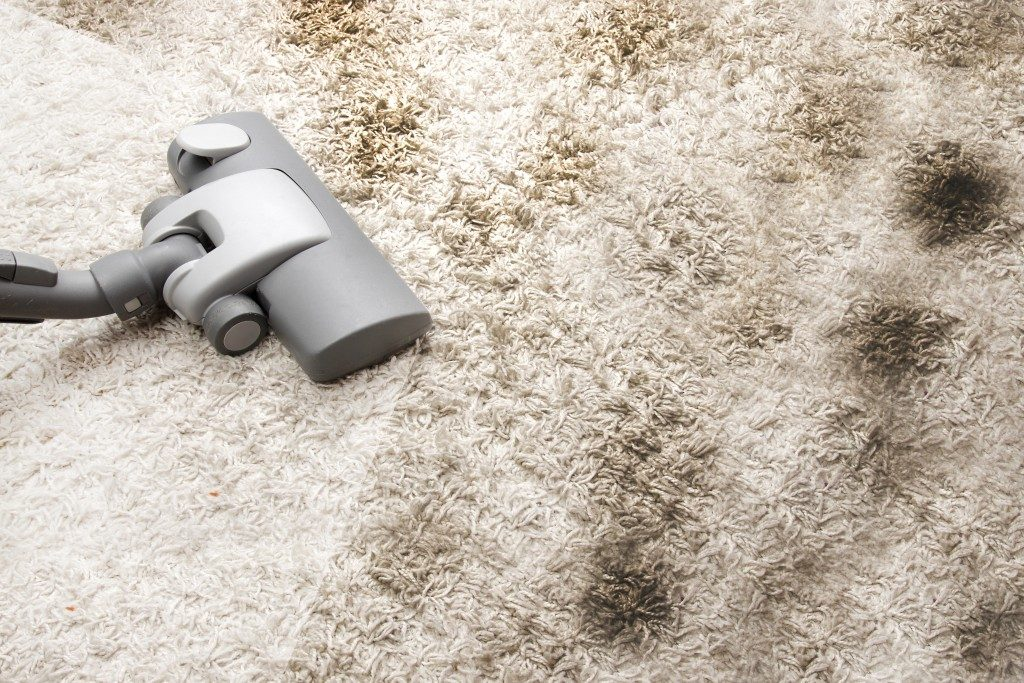 Vacuuming very dirty carpet in house