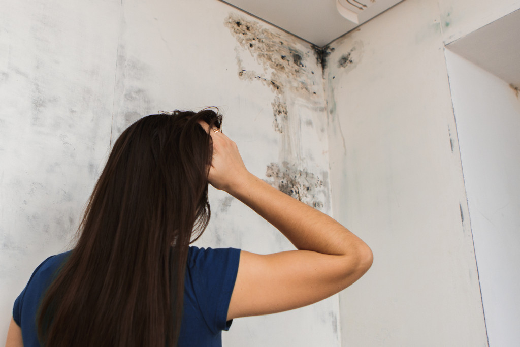 mold growth at house